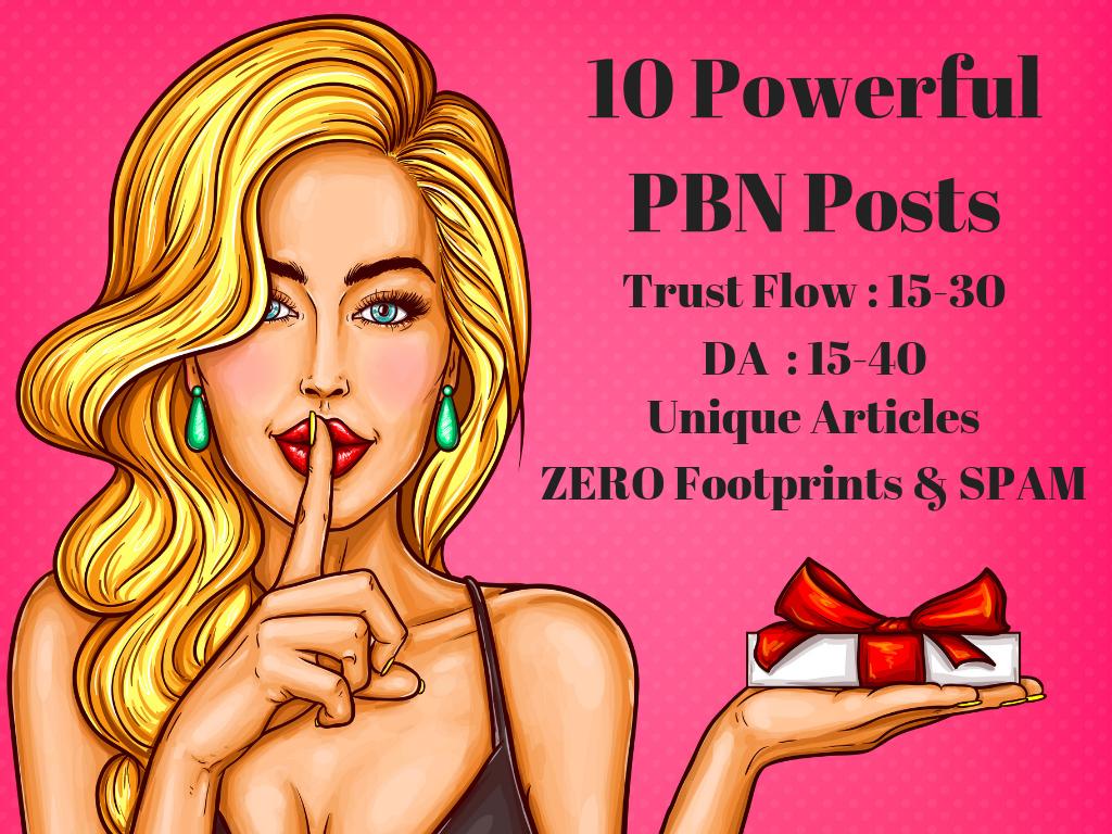 Create 10 High Domain Authority PBN Backlinks upto DA 40
