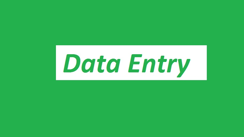 Data entry work for you 100% satisfaction
