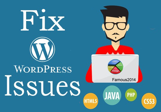 Fix any wordpress issue/bug within 24 hours