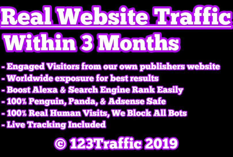 50,000 USA TARGETED Website Traffic