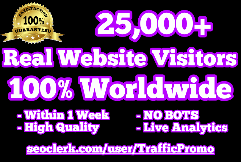 25,000 Real Human Website Traffic