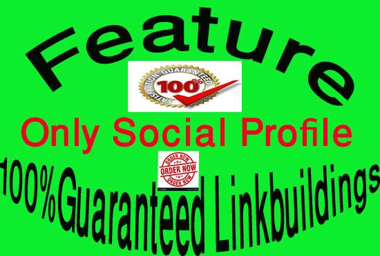 100 Guaranteed 300 Social Profile Backlinks/Link building