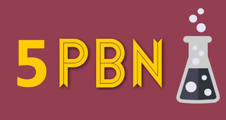 5 Manual PBN High DA PA 45+ Dofollow Backlinks