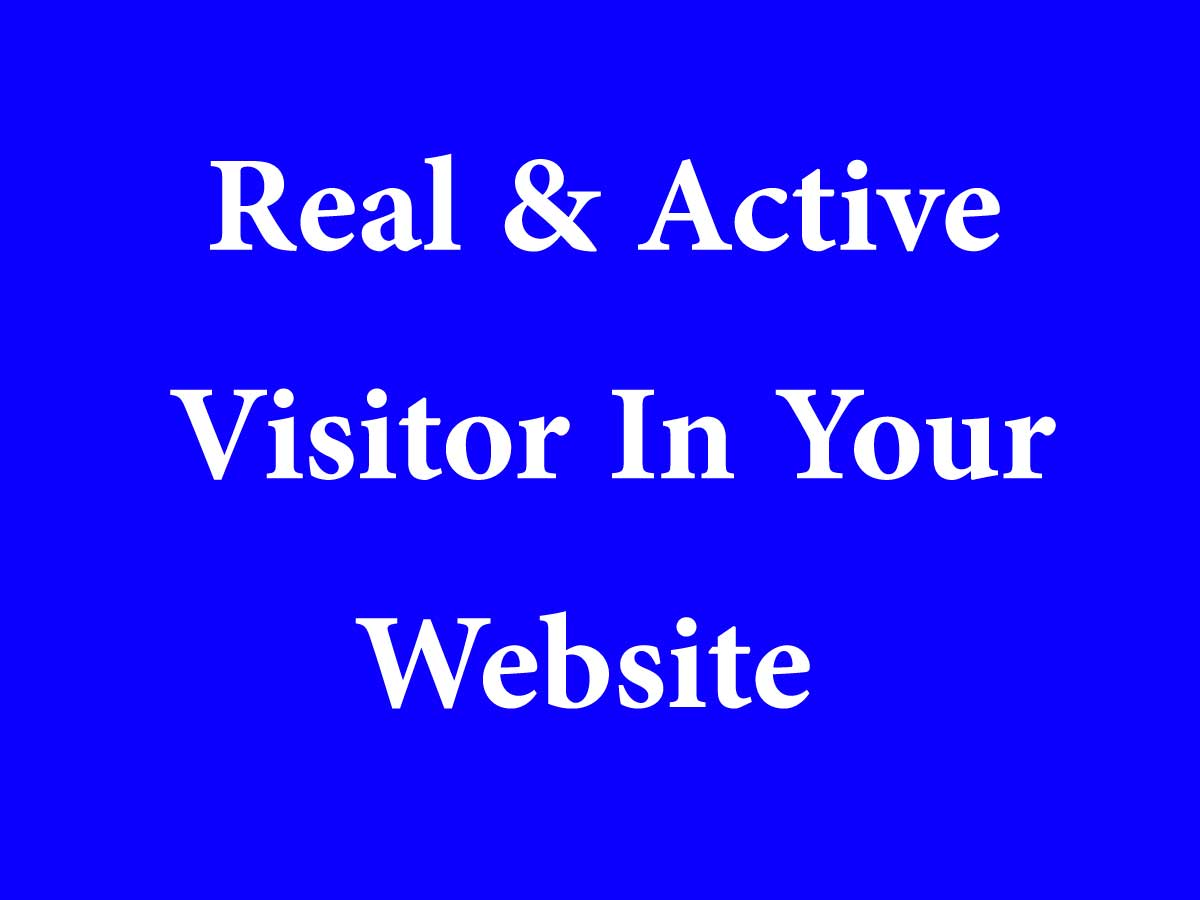 will collect 500 real and active traffics in your website
