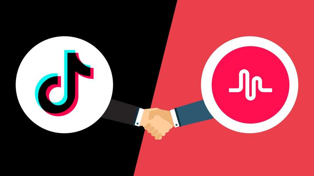 Get 500 TikTok Fans Instant delivery in 24 hours