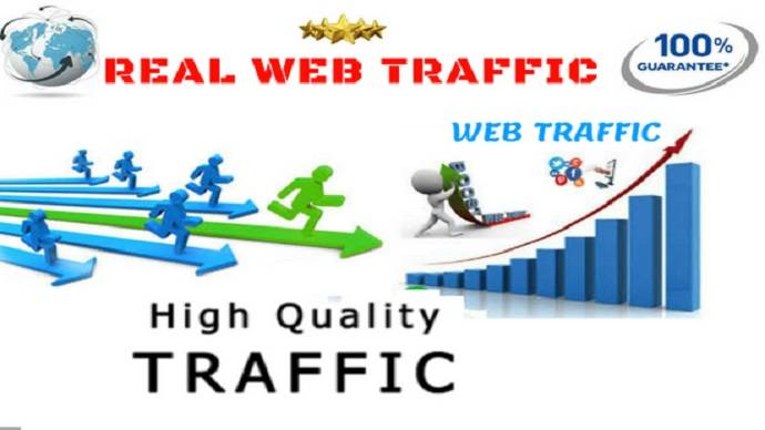 give you 50 real traffic