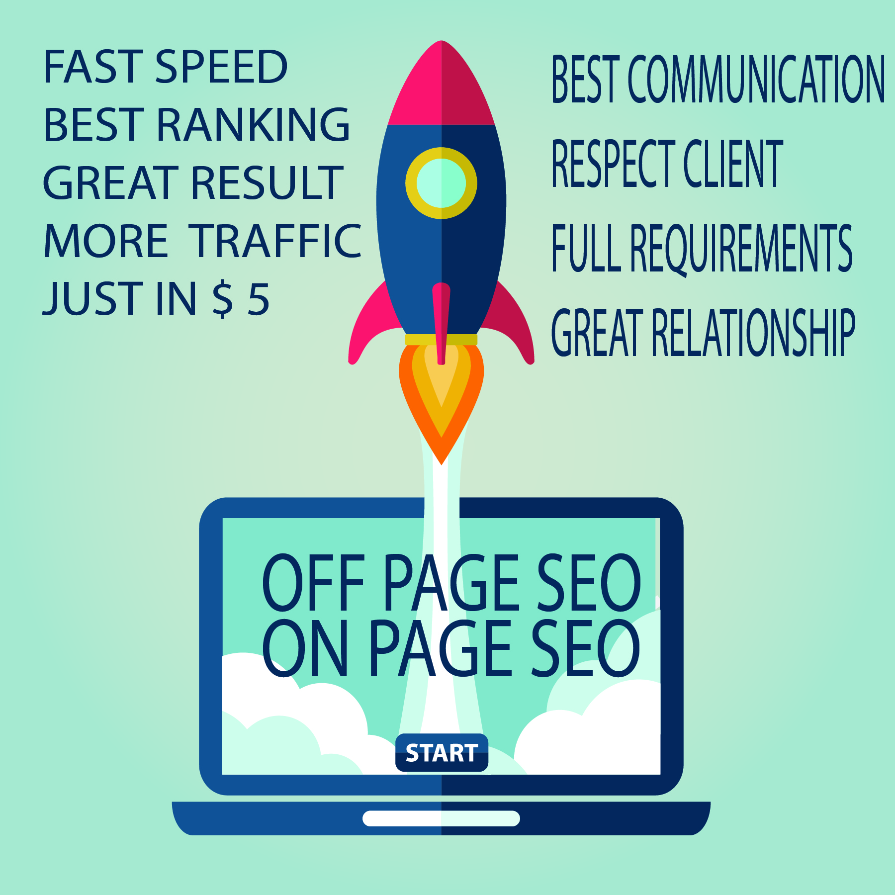 perform a complete and professional onpage and off page SEO