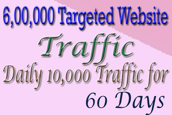 Drive 6,00,000 Real Human Targeted Traffic To Your Website For 60 Days