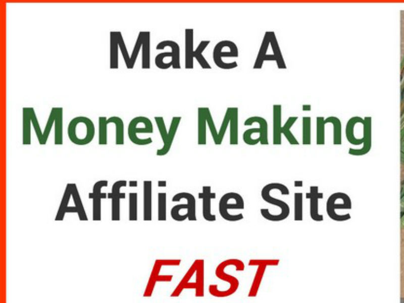 build wordpress autoblog autopilot money making website