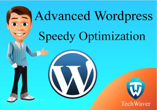 Advanced Wordpress Speedy Optimization within 24 hours