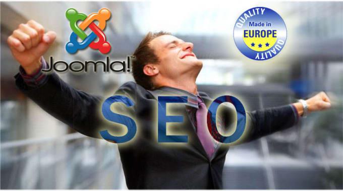 do SEO joomla or wordpress professional service