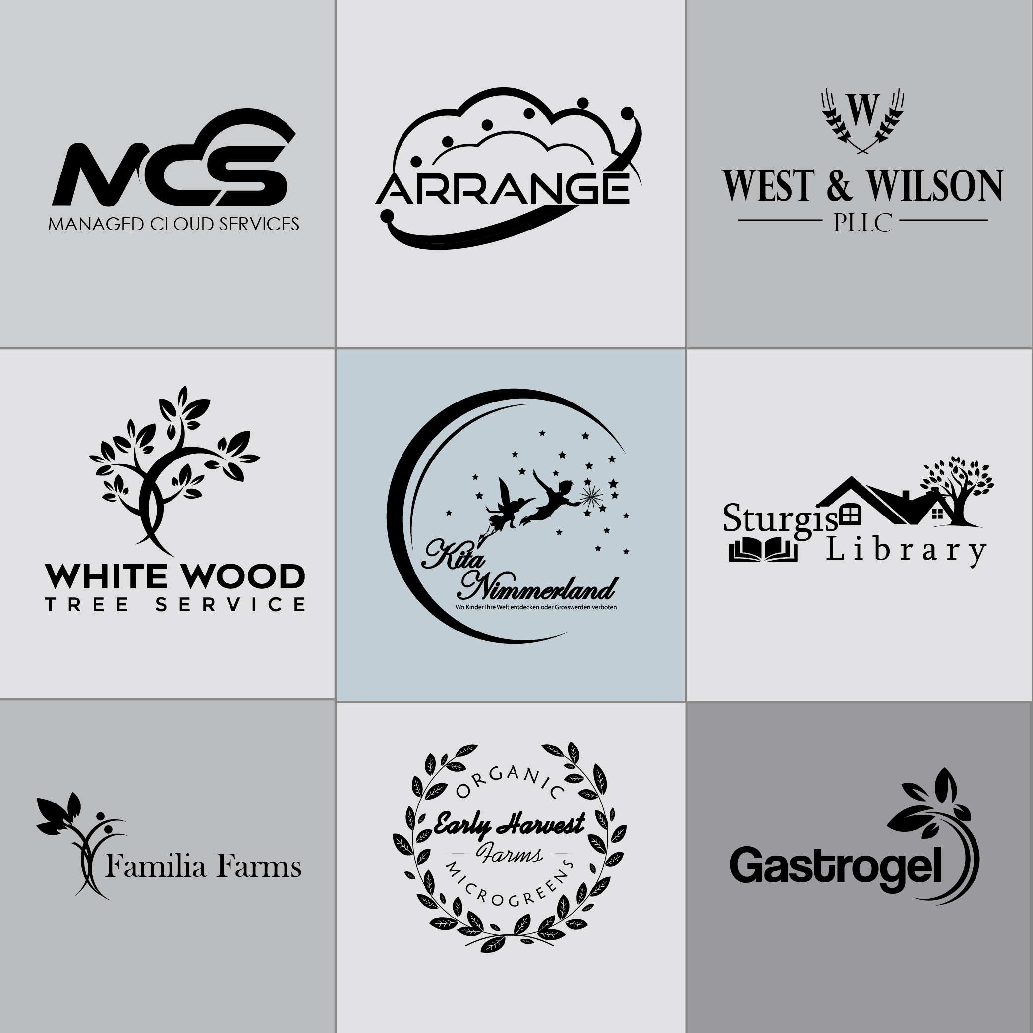 I can create Business Logo Design