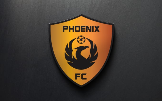 design a unique soccer logo