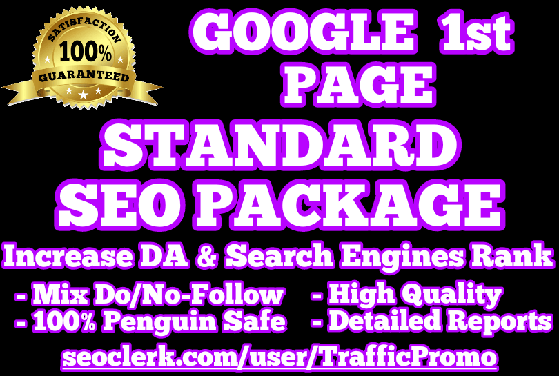 GOOGLE 1st PAGE | STANDARD SEO PACKAGE