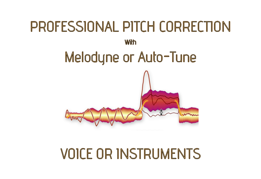 professional correct pitch voice or instrument manually