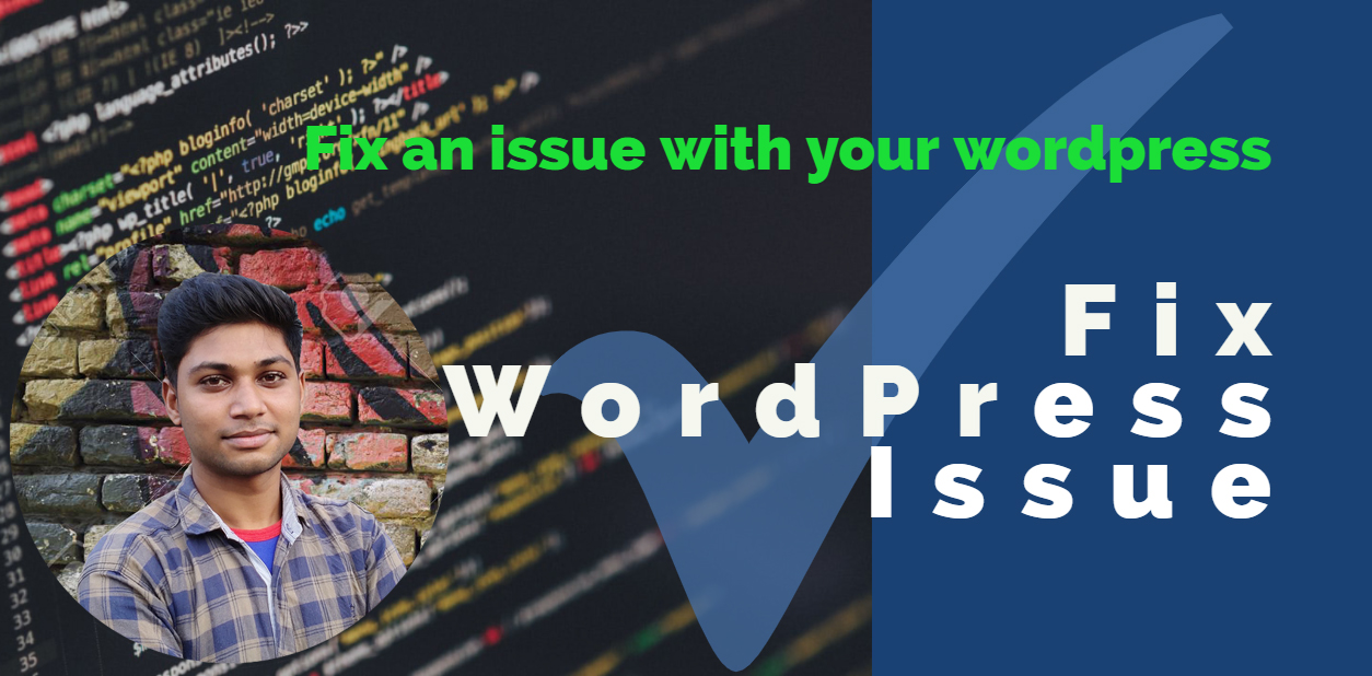 I will fix WordPress issues and errors