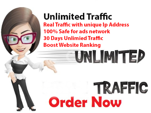 Bring Unlimited Real Visitors To Website Or Blog Web Traffic