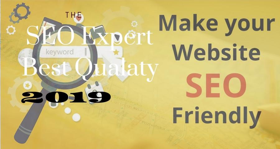 i will create wordpress website design professional