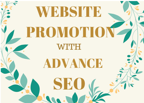 Do advance SEO to your website promotion