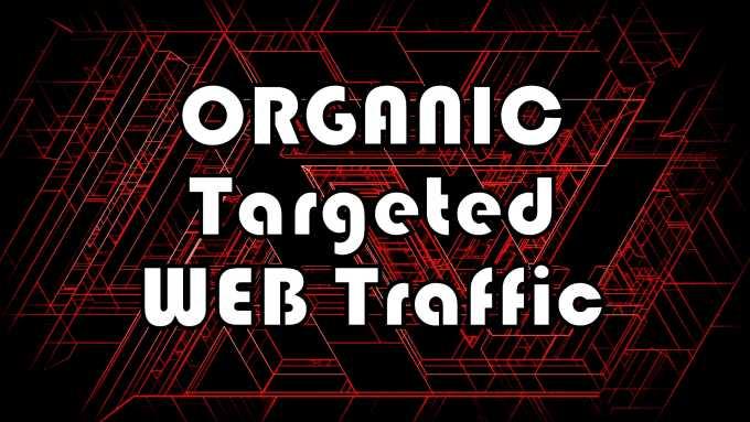 100k Organic Web Traffic.