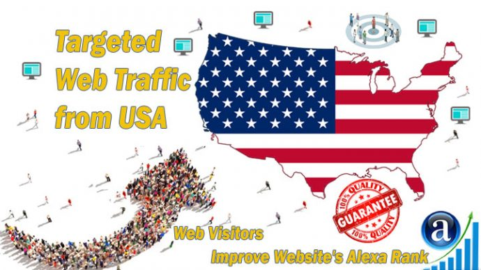 website traffic for 1 month 30000 USA