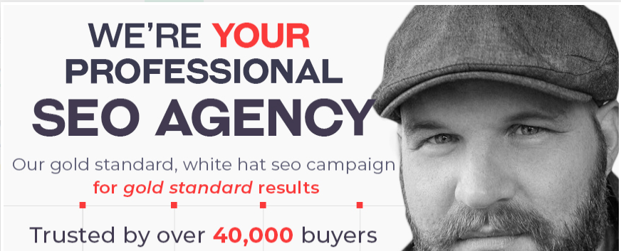 create a full SEO campaign for your website
