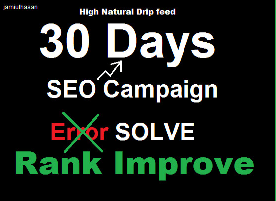 do 30 days seo rank work plus traffic with full report