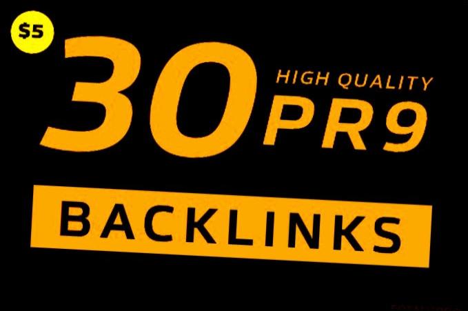 provided USA 30 high quality pr9 backlinks