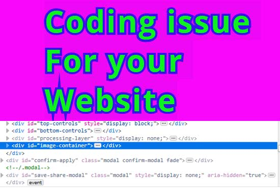 fix Any coding issue for your website