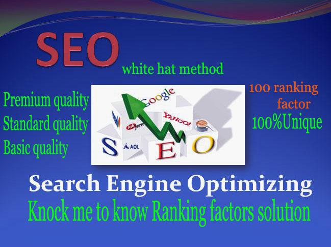 Unique SEO Service for permanent Google Ranking