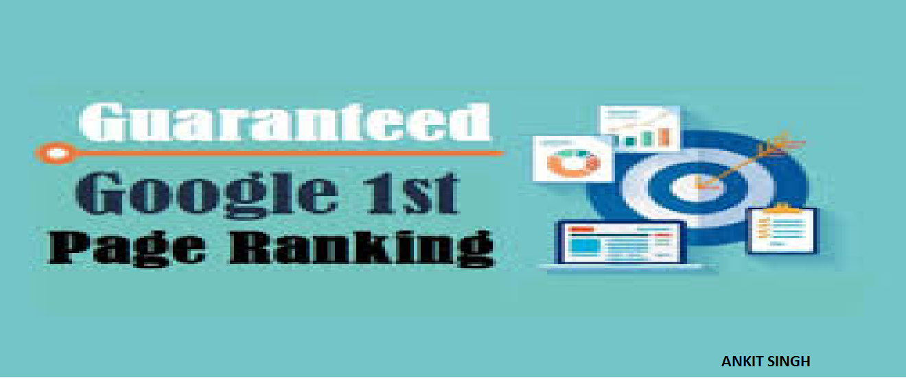 SEO Services - 100 Keyword Rank Guarantee On Google