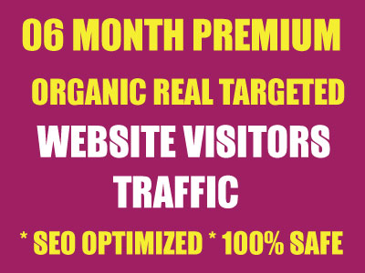 """SIX Month """"ULTRA PREMIUM"""" Niche Targeted Unlimited Traffic to Website"""
