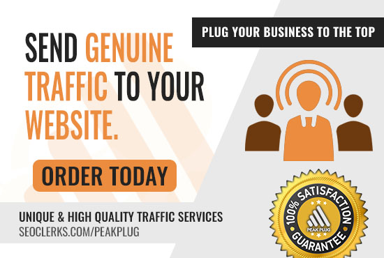 Get Daily Genuine Traffic To Your Website For 30 days