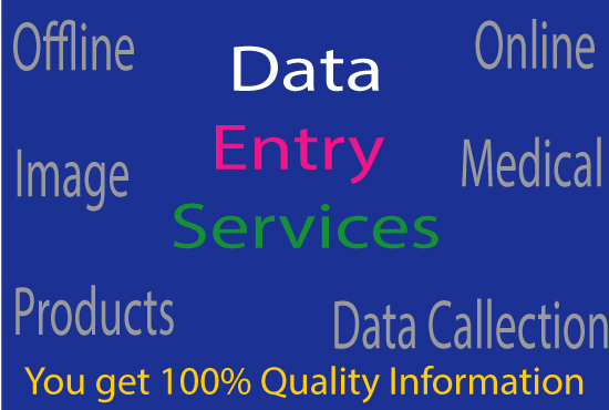 provide Professional Data Entry Services