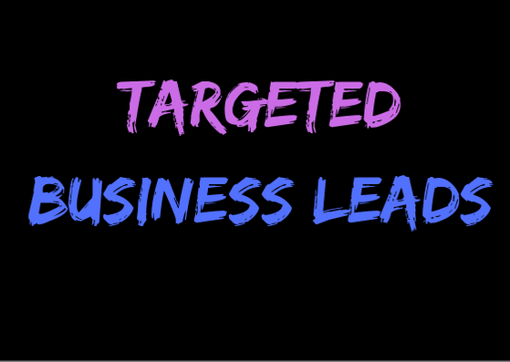 provide 100 targeted business leads as per your requi...