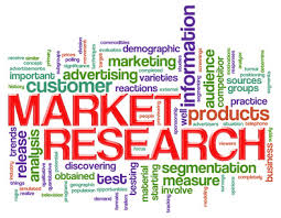 Provide standard and  concentrated marketing research