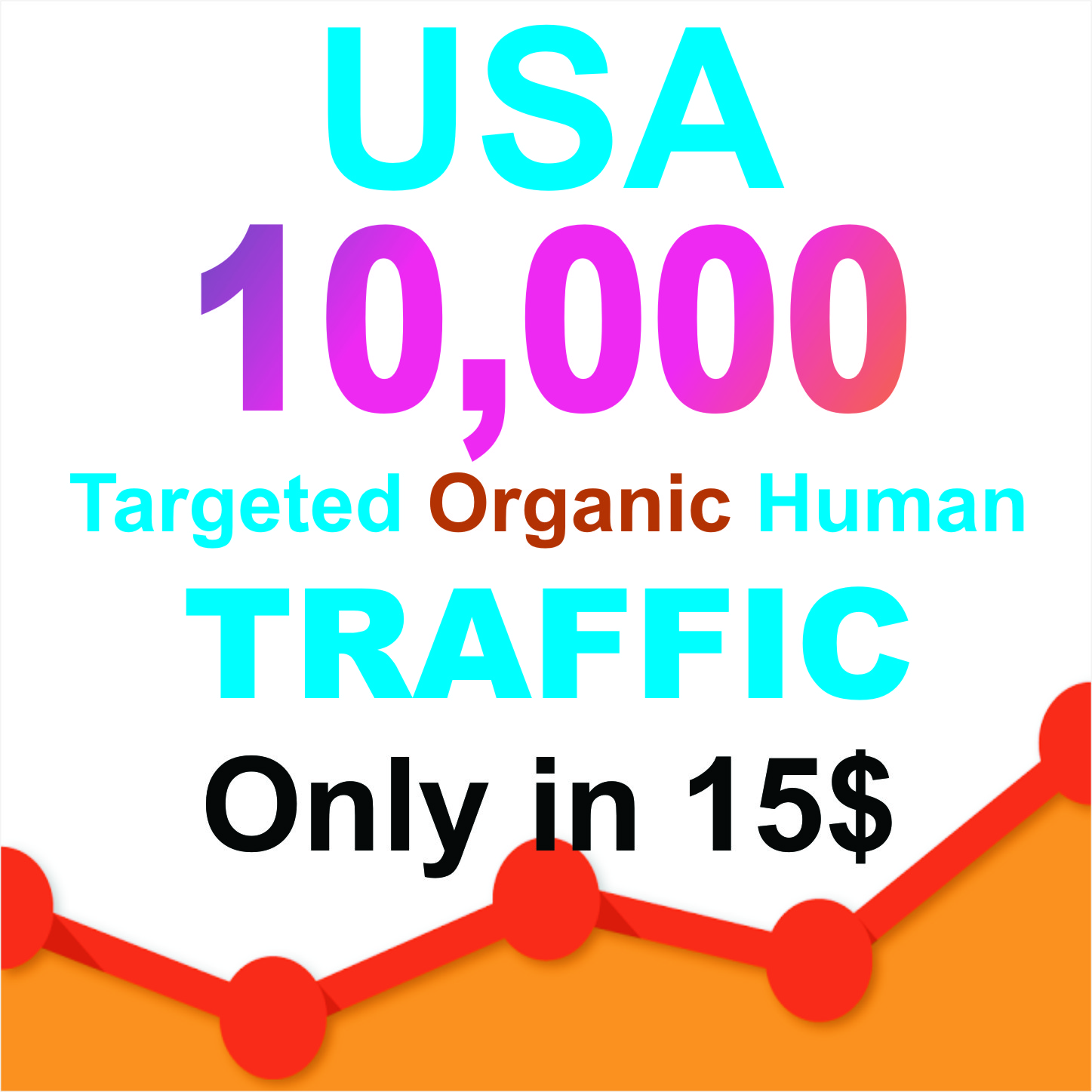 Drive 100 day USA Niche Targeted Visitors Website Human Traffic