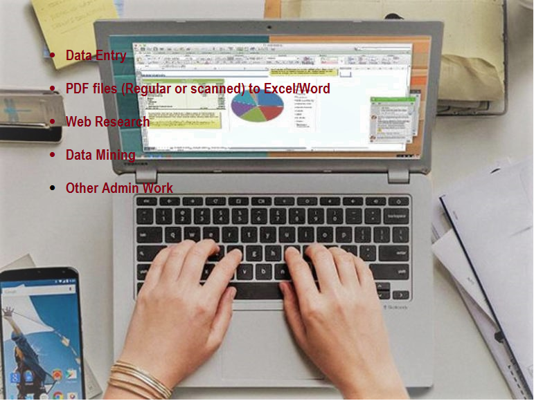 Excel data entry, Web research, copy past Tasks, a...