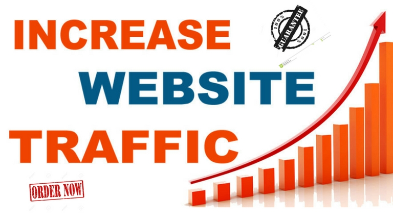 Provide real and unique traffic to your website or blog with a very low bounce rate