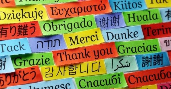 Translation Dutch/ English/ Italian & other languages