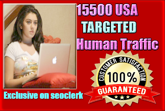 2000 USA TARGETED Human traffic to your web or blog site. Get Adsense safe and get Good Alexa rank