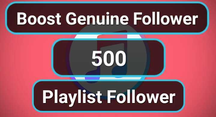 Get Manually 500 Playlist Artist Profile Followers
