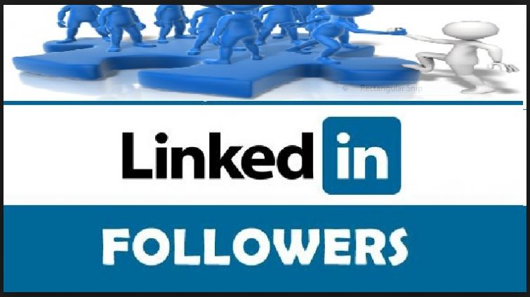 100+ HQ & Active LinkedIn Follower's for LinkedIn Company or Profile Account OR 200+ Any Social Media Service