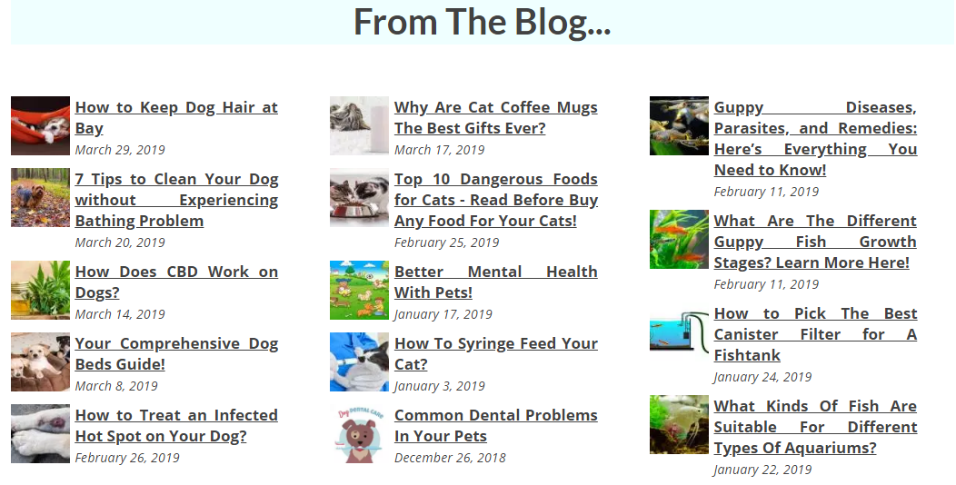 Write 2000 words and publish a guest post on my pets blog dofollow index link