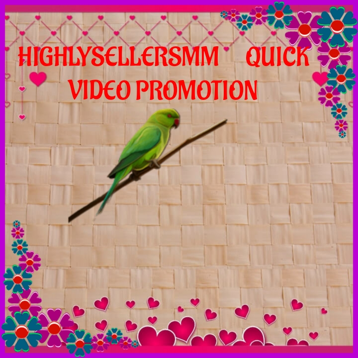 Give you Quick video promotion on your business