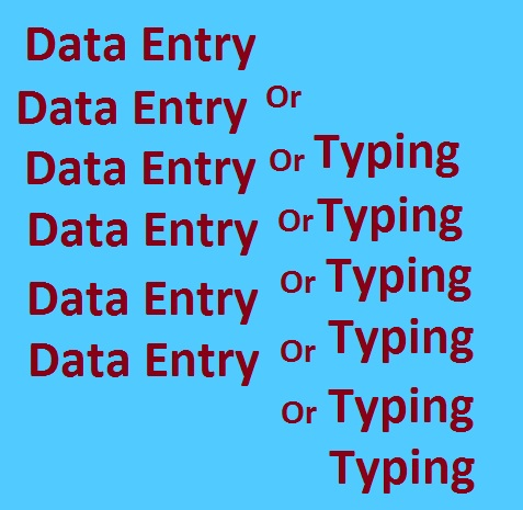 Data Entry Or Typing Available Per Page