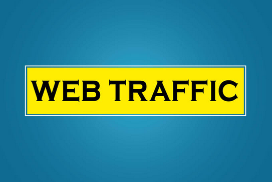 10000 real organic traffic on the website