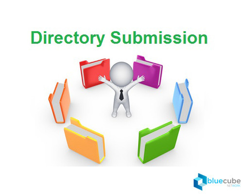 Submitting Website or address to 500 directories