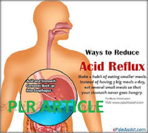 give you 25 Acid Reflux plr articles and up to 250 keywords