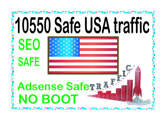 Do 10550 genuine real 200-300 Daily web traffic